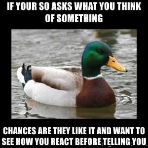advice mallard - If your SO asks what you think of something Chances are they like it and want to see how you react before telling you