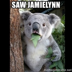 Koala can't believe it - saw JamieLynn