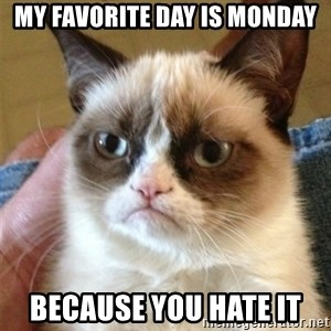 Grumpy Cat  - my favorite day is monday because you hate it