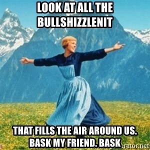 Sound Of Music Lady - look at all the bullshizzlenit that fills the air around us. Bask my friend. BASK