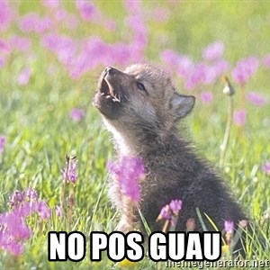 Baby Insanity Wolf -  NO POS GUAU