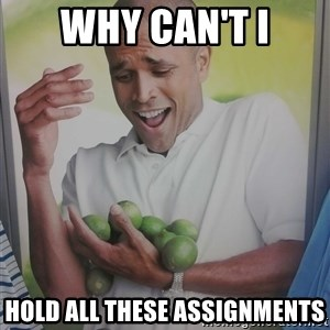 Limes Guy - WHY CAN'T I HOLD ALL THESE ASSIGNMENTS
