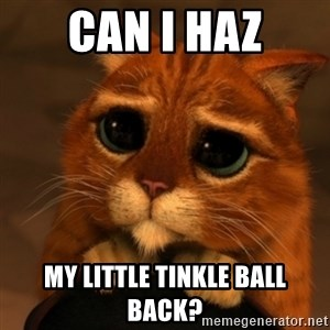 Shrek Cat V1 - Can I haz My little tinkle ball back?