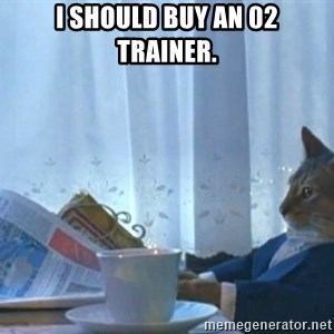 Sophisticated Cat - I should buy an 02 trainer.