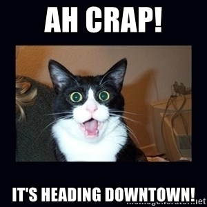 shocked cat - Ah Crap! It's Heading Downtown!