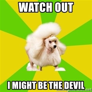 Pretentious Theatre Kid Poodle - Watch out i might be the devil