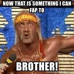 Hulk Hogan Meme - Now that is something i can fap to brother!
