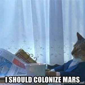 Sophisticated Cat -  I should colonize mars