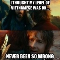 Never Have I Been So Wrong - I thought my level of vietnamese was ok...  Never been so wrong