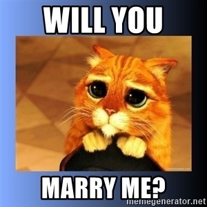 puss in boots eyes 2 - will you  marry me?