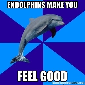 Drama Dolphin - endolphins make you feel good