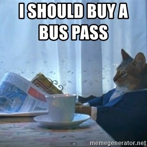 One Percent Cat - i should buy a bus pass