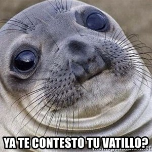 Awkward Moment Seal -  ya te contesto tu vatillo?
