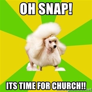 Pretentious Theatre Kid Poodle - oh snap! its time for church!!