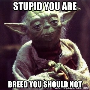 Yoda - STUPID YOU ARE BREED YOU SHOULD NOT