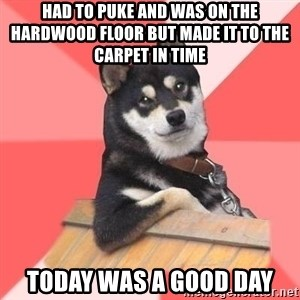 Cool Dog - Had to puke and was on the hardwood floor but made it to the carpet in time Today was a good day