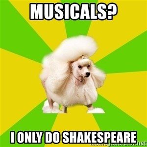 Pretentious Theatre Kid Poodle - Musicals? I only do Shakespeare