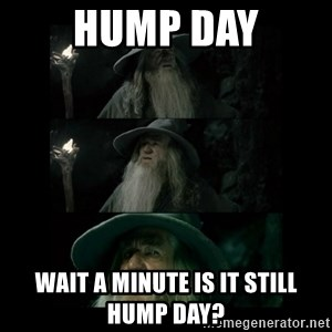 Confused Gandalf - hump day wait a minute is it still hump day?