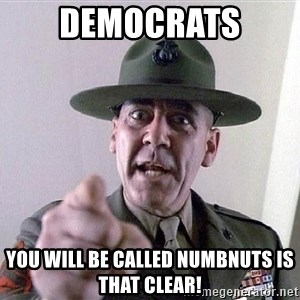 SGTHARTMAN - Democrats  you will be called numbnuts is that clear!