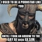 Skyrim Meme Generator - I used to be a pornstar like you Until I took an arrow to the Dick