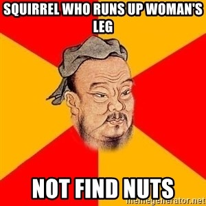 Wise Confucius - Squirrel who runs up woman's leg Not Find nuts