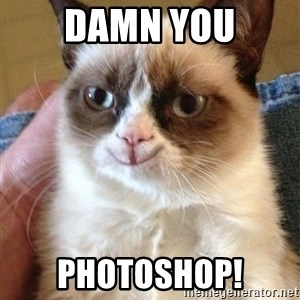 Grumpy Cat Happy Version - damn you pHOTOSHOP!