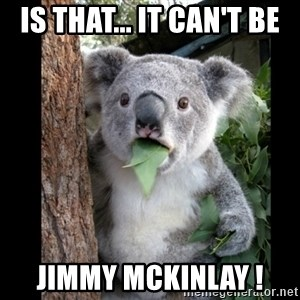 Koala can't believe it - Is that... It can't be JIMMY MCKINLAY !