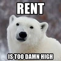 Popular Opinion Bear - rent is too damn high