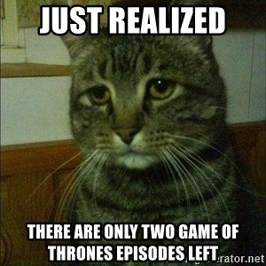 Depressed cat 2 - just realized  there are only two game of thrones episodes left