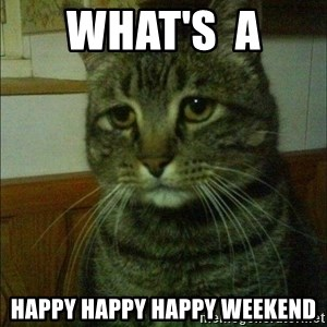 Depressed cat 2 - WHAT'S  A  HAPPY HAPPY HAPPY WEEKEND