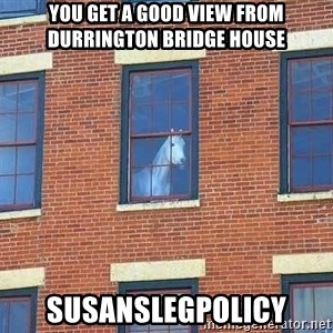 window horse - YOU GET A GOOD VIEW FROM DURRINGTON BRIDGE HOUSE SUSANSLEGPOLICY