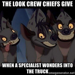 Three Hyenas from Lion King - the look crew chiefs give when a specialist wonders into the truck