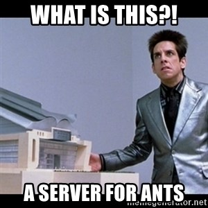 Zoolander for Ants - WHAT IS THIS?! A SERVER FOR ANTS