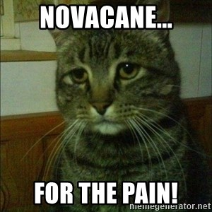 Depressed cat 2 - Novacane... For the Pain!