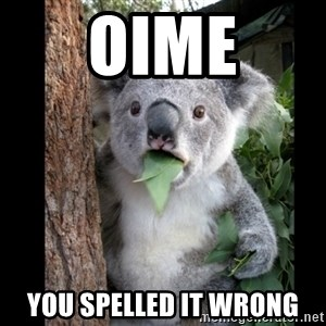 Koala can't believe it - ΟΙΜΕ you spelled it wrong