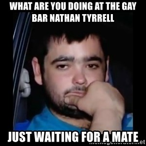 just waiting for a mate - what are you doing at the gay bar nathan tyrrell just waiting for a mate