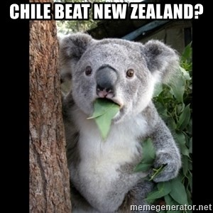Koala can't believe it - CHILE BEAT NEW ZEALAND?