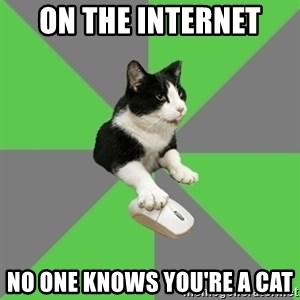 roleplayercat - on the internet  no one knows you're a cat