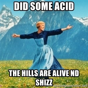 Sound Of Music Lady - DID SOME ACID THE HILLS ARE ALIVE ND SHIZZ