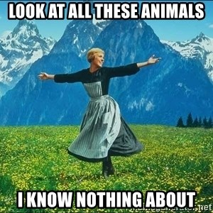 Look at all the things - look at all these animals i know nothing about