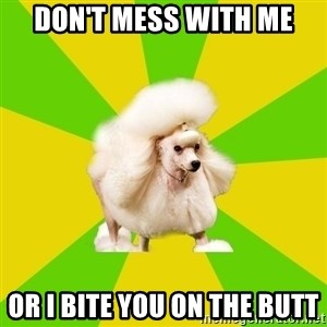 Pretentious Theatre Kid Poodle - Don't mess with me Or I bite you on the butt