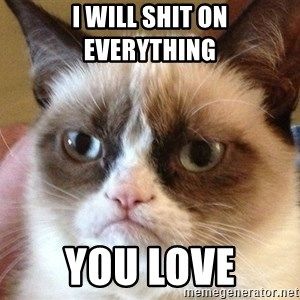 Angry Cat Meme - I will shit on everything  you love