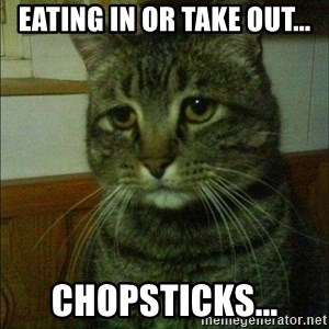 Depressed cat 2 - eating in or take out... chopsticks...