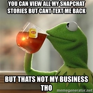 Kermit The Frog Drinking Tea - You can view all my snapchat stories but cant text me back but thats not my business tho