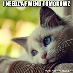 First World Problems Cat - I needz a fwend tomorowz