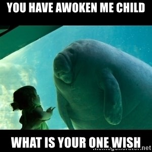 Overlord Manatee - you have awoken me child what is your one wish