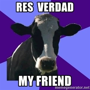Coworker Cow - Res  verdad my friend