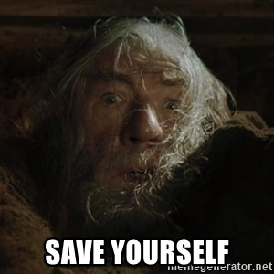 gandalf run you fools closeup -  Save yourself