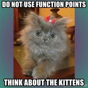 cute cat - do not use function points think about the kittens