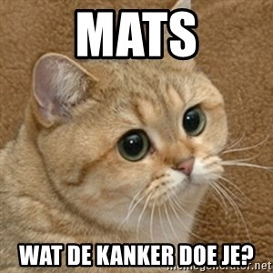 motherfucking game cat - Mats Wat de kanker doe je?